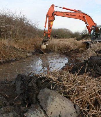 Amager Fælled | Naturforbedring ved oprensning af bassiner | Holbøll A/S